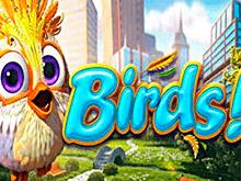 Birds! – выигрывайте в казино Вулкан